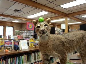 We have two stuffed animals in the library, each done by the circulation person before me who recently retired.